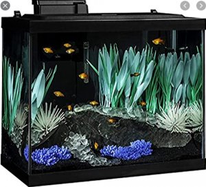 Tetra 20-Gallon Aquarium Kit